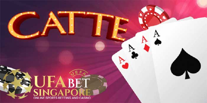 What Is Catte Card Game ? And Experience To Play Catte Cards