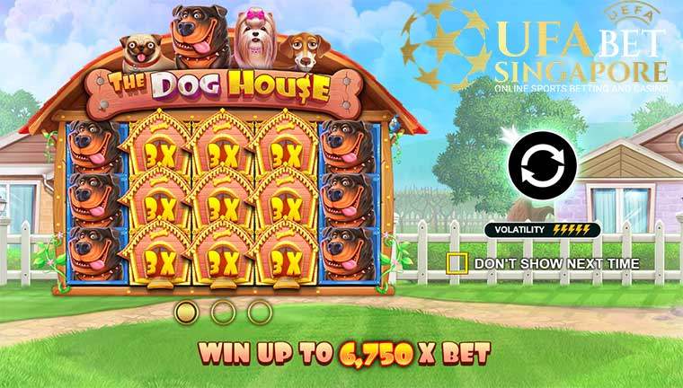 How To Play The Dog House Slot At Pussy888